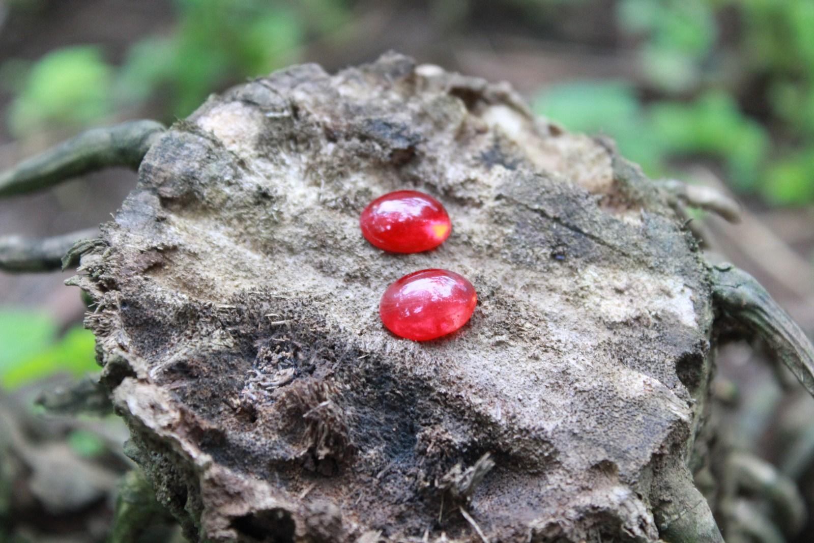 Batu Mustika Merah Delima sarana pengasihan ampuh dan membuka aura kecantikan